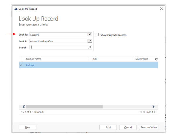 Microsoft CRM Look for